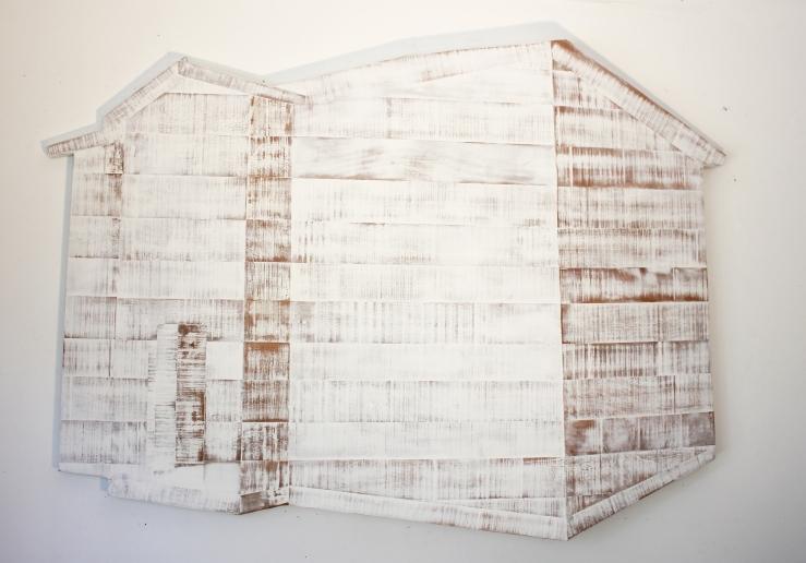 wooden skin 1